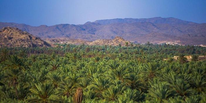 المملكة العربية السعودية وجهات أماكن سياحية